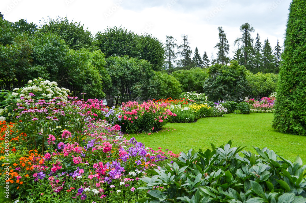 Fototapeta Summer garden in Saint Petersburg city, landscape. Beautiful park, flowers and trees view, green lawn, grass. Famous historical place. For posters, interior decoration, calendars, prints designs.