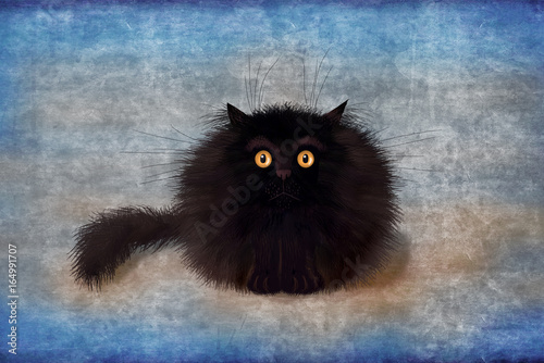 Photo  Fluffy Black Mad Kitten On Blue Background