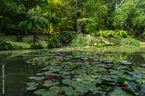 Impressionistic landscape with nympheas at Parque Terra Nostra, Sao Miguel, Furn Canvas Print