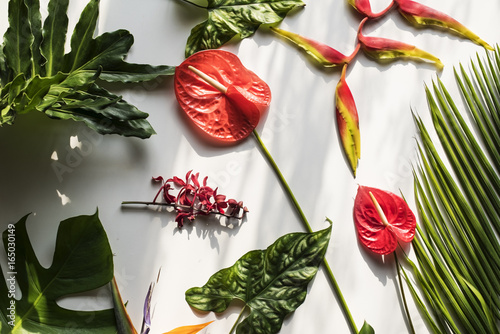 Fotobehang Bloemen Floral leaves romance decoration freshness lush