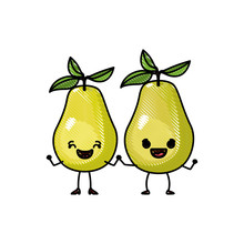 White Background Of Colored Crayon Silhouette Of Realistic Pair Of Pear Fruits Caricature Vector Illustration
