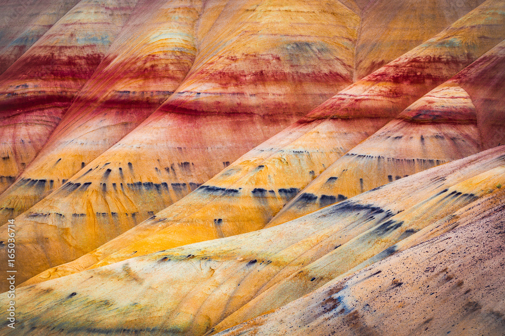 Fototapety, obrazy: Painted Hills detail, John Day Fossil Beds National Monument, Oregon, USA