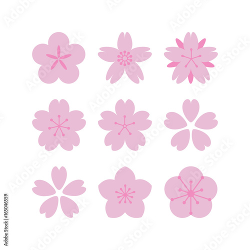 Sakura flowers set Wall mural