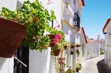 Traditional Street Of Moura Vi...
