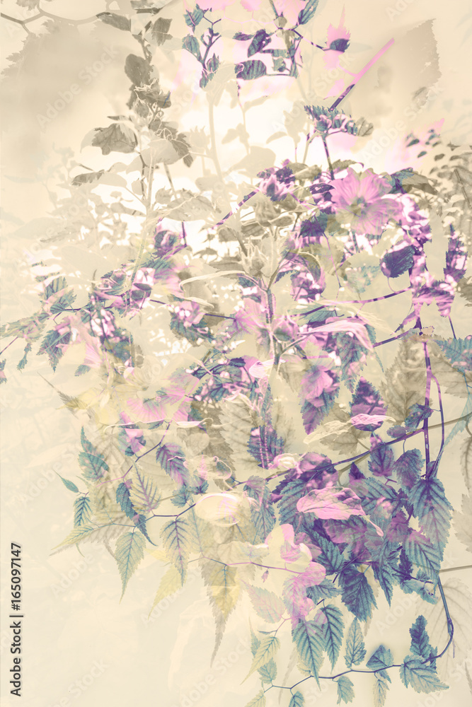 Artistic, floral background with subtle flowers