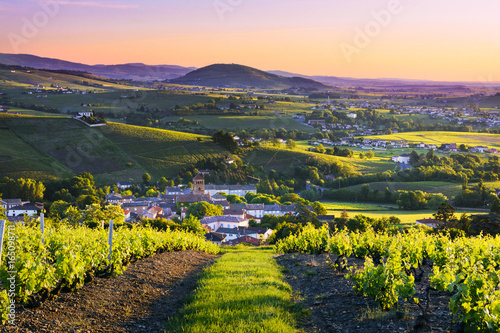 Spoed Foto op Canvas Grijze traf. Landscape and Brouilly hill at sunrise