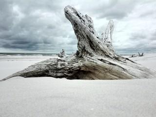 dzika plaża - polskie morze bałtyckie, Łeba