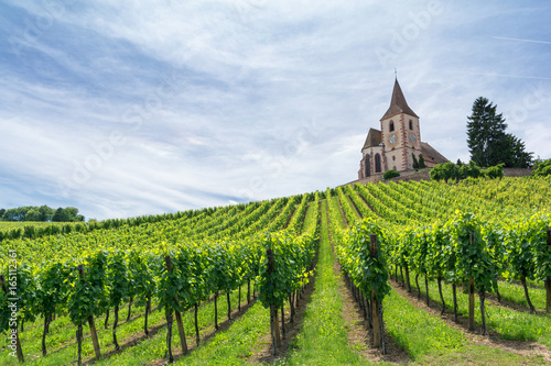 La pose en embrasure Vignoble vineyard and medieval church in Alsace, France