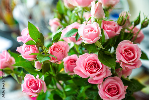 Romantic Bouquet Of Pink Garden Roses On Blurred Background For Posters,  Prints, Wallpaper,