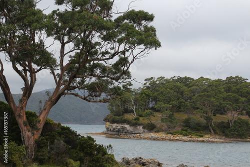 Isle of the Dead- Port Arthur-Tasmanien Canvas Print