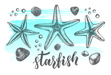 Background With Sea Starfishs. Marine Ink Hand Drawn Elements For Design. Template For Cards, Banners, Posters With Modern Brush Calligraphy Style Lettering. Vector Illustration.