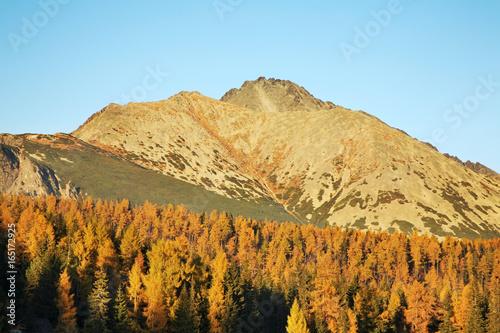 Papiers peints Piscine View of High Tatras near Strbske Pleso lake. Slovakia