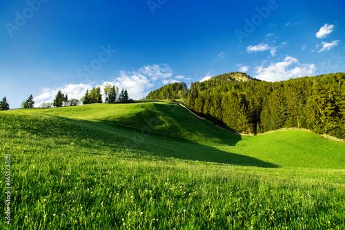 Foto auf Gartenposter Hugel Beautiful green mountains nature landscape at summer