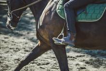 Cowboy Man Riding An Horse