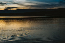 Circles In A Lake At A Late Afternoon Golden Sunset.