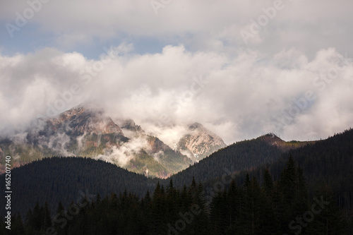 Fototapety, obrazy: Mountains in the mist