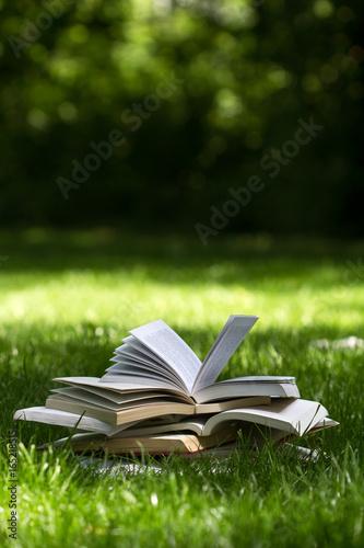 open books on grass in a green park Wallpaper Mural