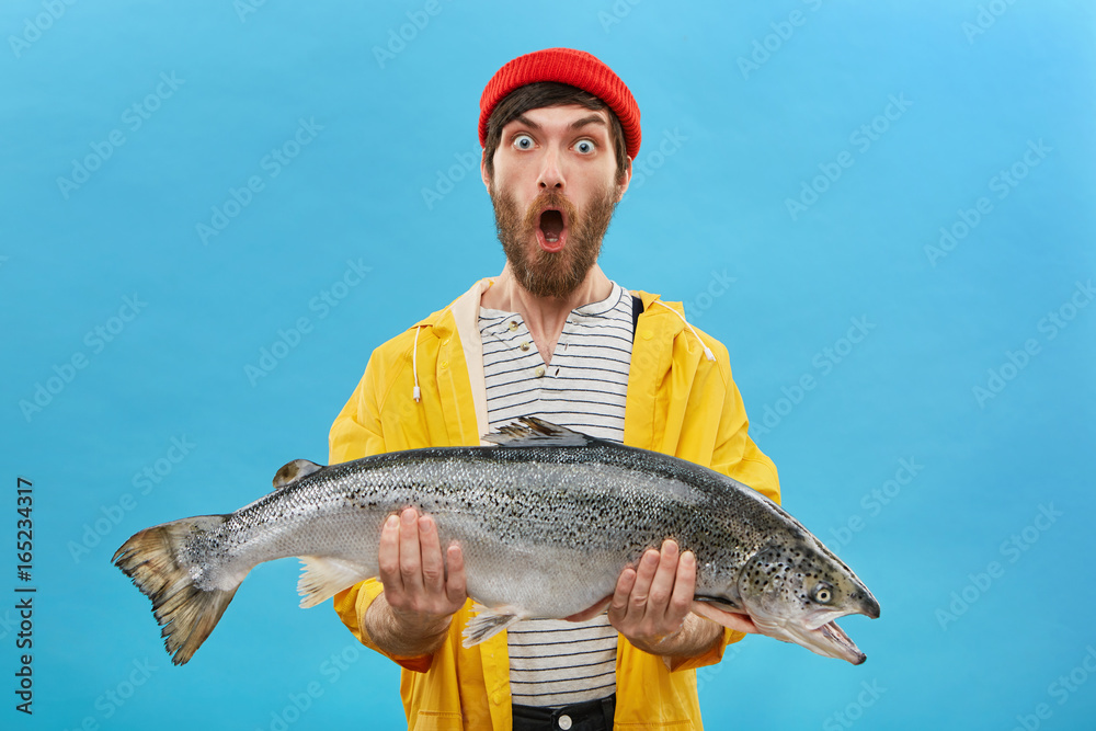 Fototapeta Studio shot of stylish young bearded fisherman in yellow raincoat and red hat looking in shock with jaw dropped, holding big sea-water fresh-caught fish in both hands, surprised with fine catch