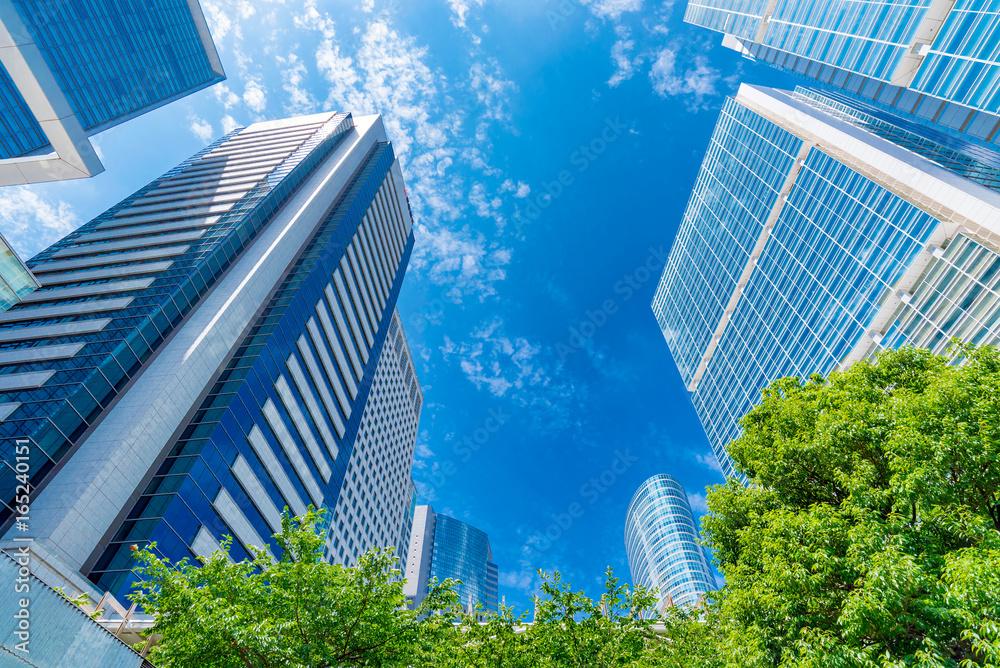 Fototapeta 爽やかな緑のビジネス街