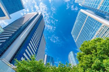 Panel Szklany Niebo 爽やかな緑のビジネス街