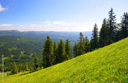 Photo Summer landscape in National park Bayerische Wald, view from the mountain Grosser Arber, Germany