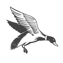 Wild Duck Icon Isolated On White Background. Design Elements For Logo, Label, Emblem, Sign. Vector Illustration
