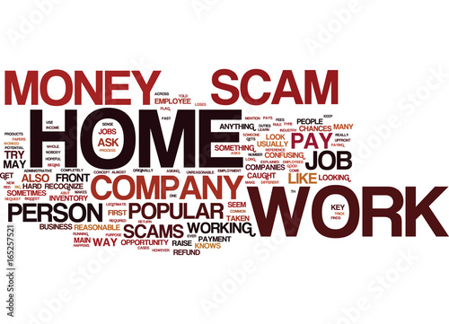 Fotografie, Obraz  THE NUMBER ONE WORK AT HOME SCAM EXPLAINED Text Background Word Cloud Concept