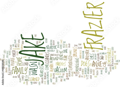 THE NEUROTIC DOGS Text Background Word Cloud Concept Wallpaper Mural