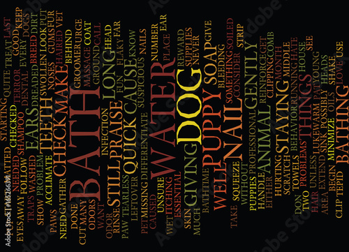 Photo THE DREADED BATH Text Background Word Cloud Concept