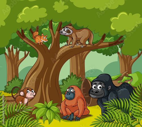 Scene with wild animals in the forest #165268738