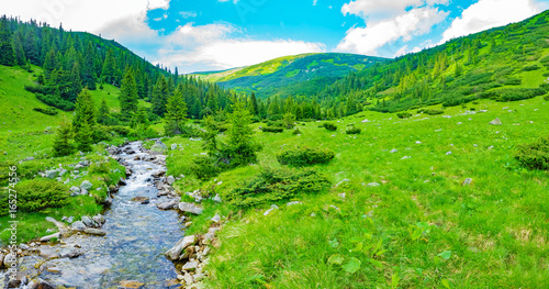 Foto auf Leinwand Gebirge mountain stream flowing through a beautiful mountain valley in summer day