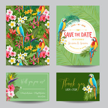 Save The Date Card Set. Tropic...