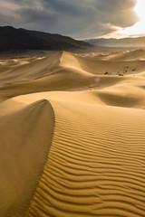 FototapetaLeading Dunes