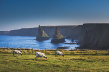 Stacks Of Duncansby Near John O Groats, Highland, Scotland, UK
