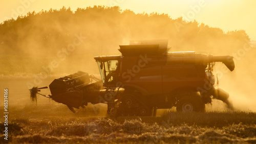 Staande foto Meloen Combine harvester agriculture machine harvesting golden ripe wheat field in light of the setting sun in Germany