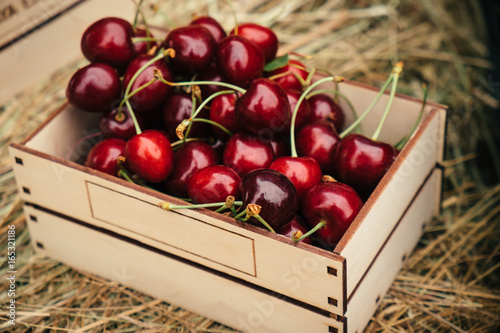 Tasty red cherry berries Canvas Print
