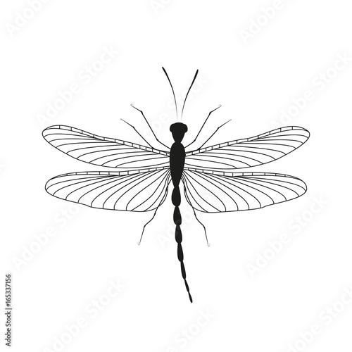 In de dag Boho Stijl Dragonfly in flight