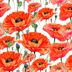 Panel Szklany Maki Wildflower poppies flower pattern in a watercolor style. Full name of the plant: poppies. Aquarelle wild flower for background, texture, wrapper pattern, frame or border.