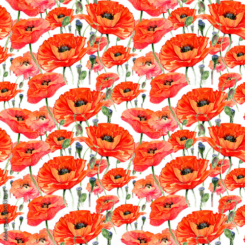 wildflower-maku-kwiat-wzor-w-stylu-przypominajacym-akwarele-pelna-nazwa-zakladu-maki-aquarelle-dziki-kwiat-dla-tla-tekstury