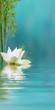 lotus et bambous, fond bleu