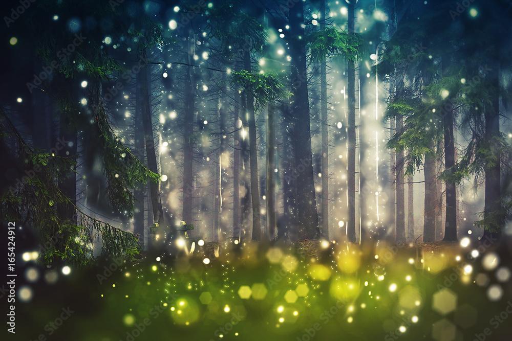 Fototapeta Forest Trees, Wood Glade - Mystic, Bokeh, Lens Flares, Camera Blur - Sunlight