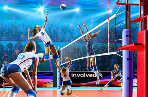 Female professional volleyb...