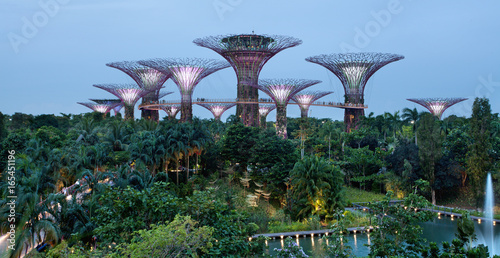 Tuinposter Singapore Gardens by the bay, Singapour