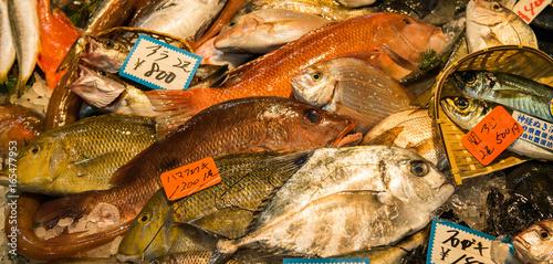 Vászonkép Fish Market in Tokyo, Japan