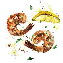 Grilled Shrimp. Watercolor Illustration.