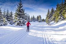 Frau Beim Langlaufen In Winter...