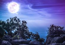 Landscape Of Rock Against Blue...