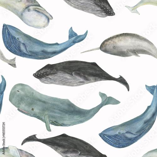 Fototapeta premium Akwarela malarstwo wzór z wielorybami