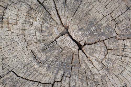 old-wood-texture-background-floor-surface