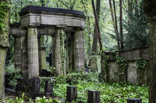Poster Ruine Alter verwilderter Friedhof in Berlin